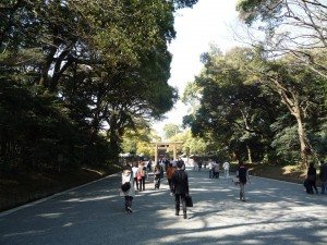 Meiji Jingu shrine is located nearby