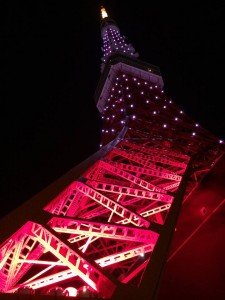 "Night time ""Tokyo Tower""."