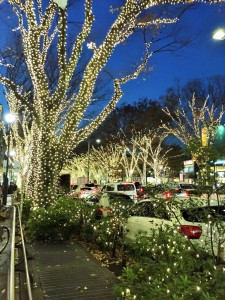 Omotesando area: The illuminations that continue from Omotesando Hills to Harajuku.