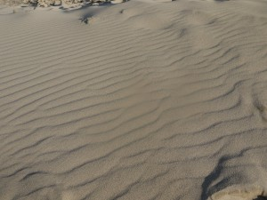 Ripple patterns(2)