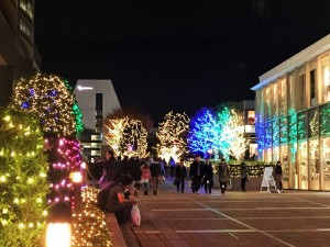 Sinjyuku area: The illuminations of Shinjuku Southern Terrace.