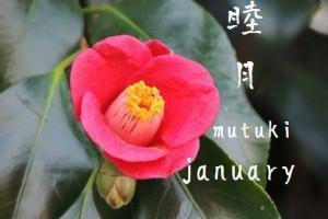 "Japanese word ""Wahu-getsu-mei"""