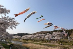 "A head of May you can also see ""Koinobori""(the carp streamer) which is use by an event of May."
