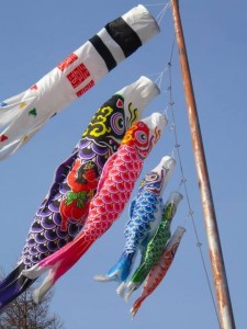Picture of Kintaro on the back of a carp streamer