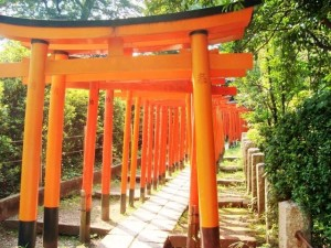 """Senbon Torii"" (it means thousands of torii gates)"