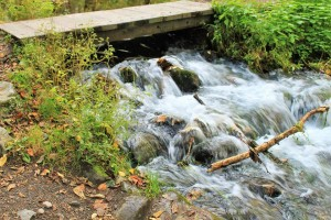 """The clear stream which flows out from the """"Kaminoko"""" Pond."""
