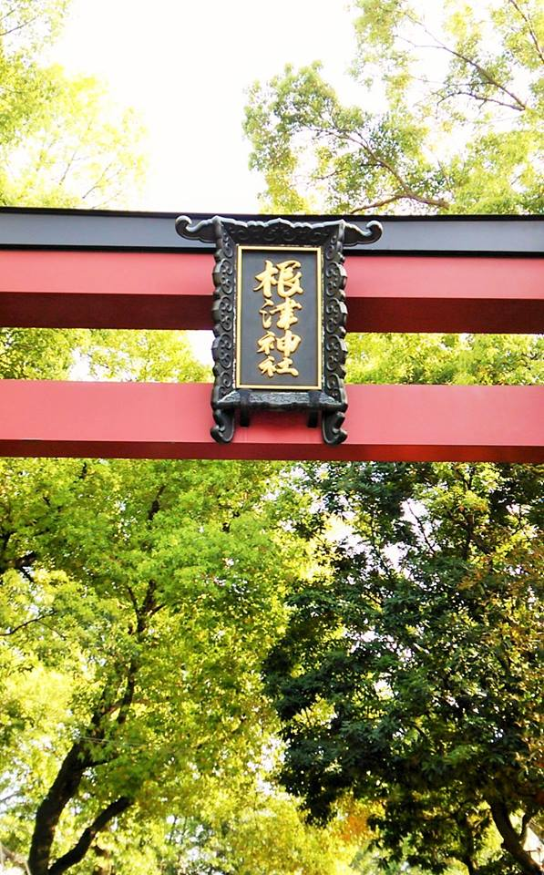 "Torii, the entrance of ""Nezu Shrine"""