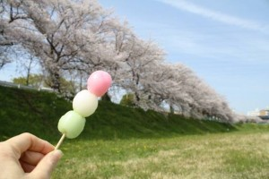 "We call it ""Hanami Dango"", too."