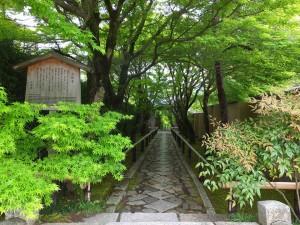 "At shrine entrance of ""Koetsu-ji"" in summer."