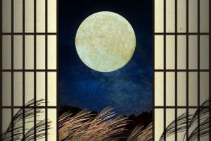 """Tsukimi"" (Viewing the moon) (9/15)"