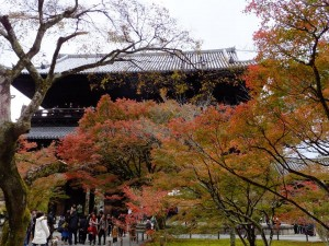 """Sanmon"" with colored leaves ""Momiji"""