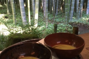 You can enjoy Japanese traditional tea with viewing the bamboo forest.