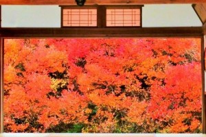 "the famous temple of ""Momiji"""