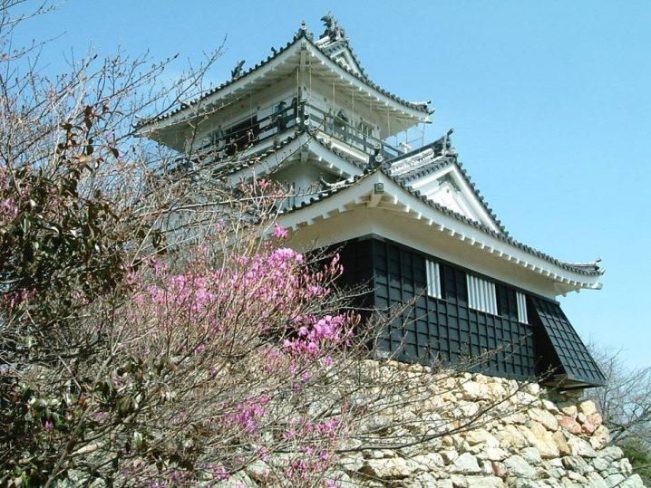 Hamamatsu Castle with cherry blossom