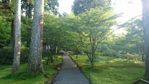relaxed atmosphere at Ohara Sanzen-in Temple